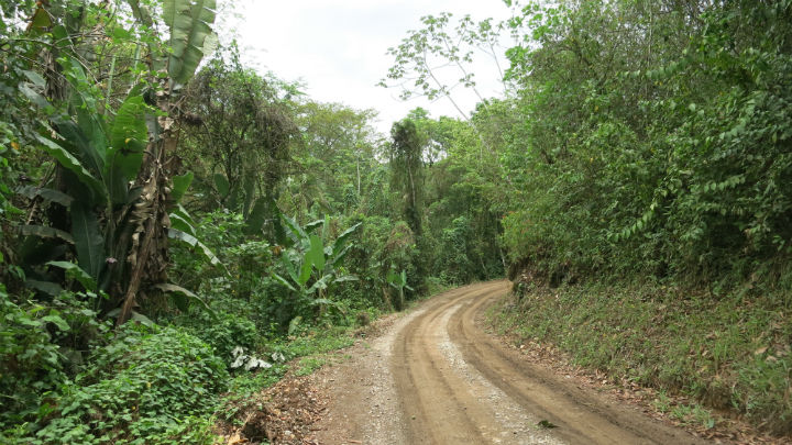 The road to Semuc Champey.