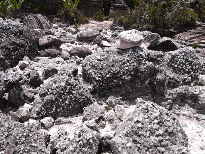 Crystal covered rocks, Valle de Quarzo (the crystal valley). Roraima trek