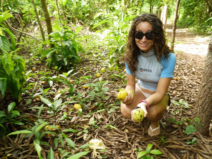 Activities on Little Corn. Alya picking up some mangos on the way home. Little Corn island travel guide.