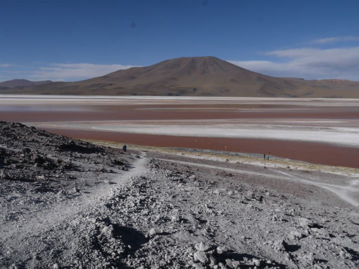 Laguna Colorada, the red lagoon, one of many interesting lagoons in the salt desert. Uyuni travel guide