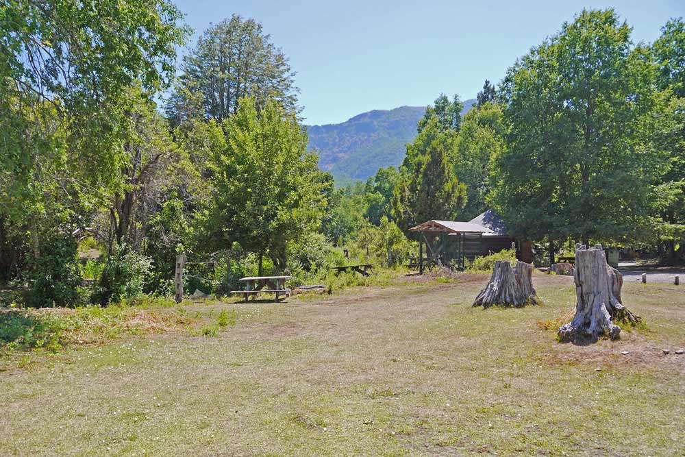 Cozy camping spots in Valle de la Catas, green loan and forest