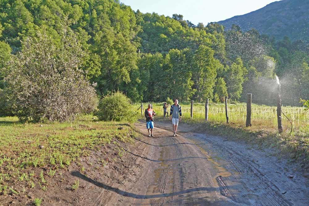 Gravel road through the forest, Siete Tazas National Park