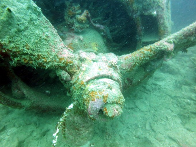 The sinking of the World War II B42 bomber was an interesting dive.