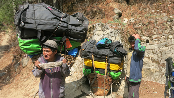 Everest base camp trek. The Porters at EBC carries heavy loads.