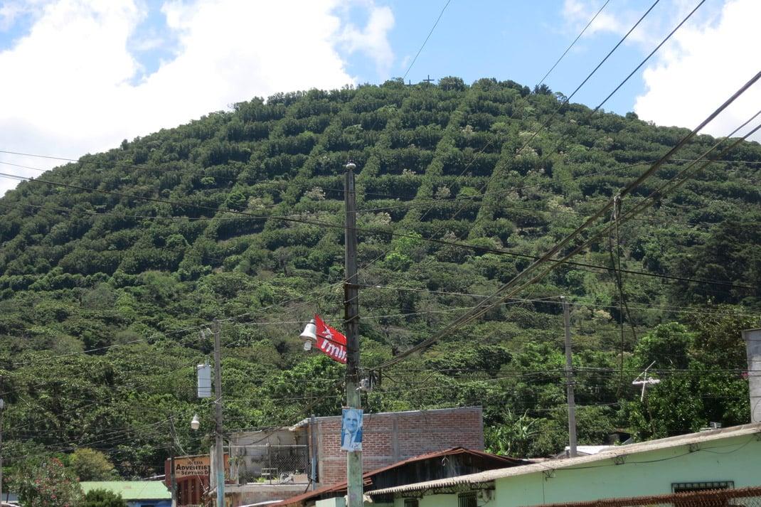 Apaneca-coffee-fincas-stingy-nomads