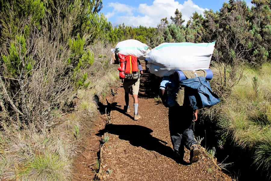 Porters-Kilimanjaro