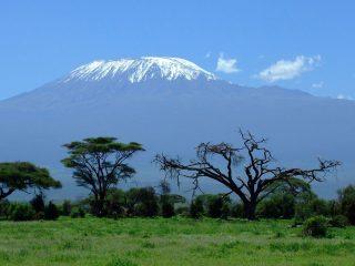 Kilimanjaro, snow on the summit far away!