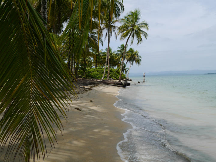 Bocas del Drago, the best beach we went to.
