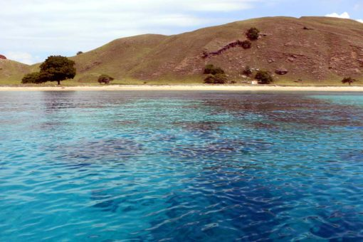 Absolutely beautiful area, Komodo National park. Flores backpacking guide