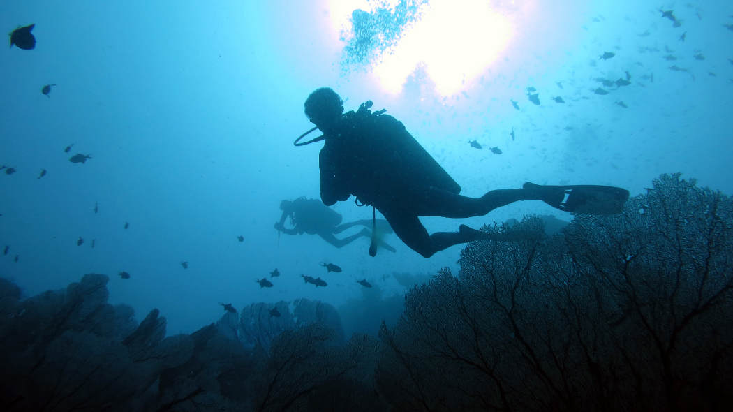 Diving Pulao Weh, Batee Tokong