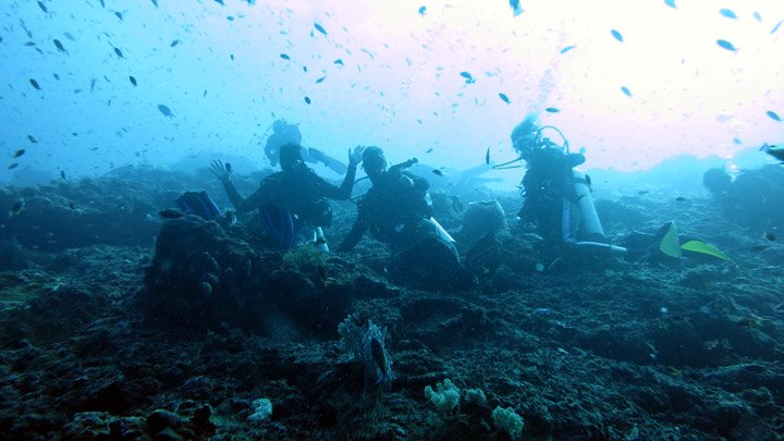 Nusa Penida Diving a Complete Guide - Stingy Nomads