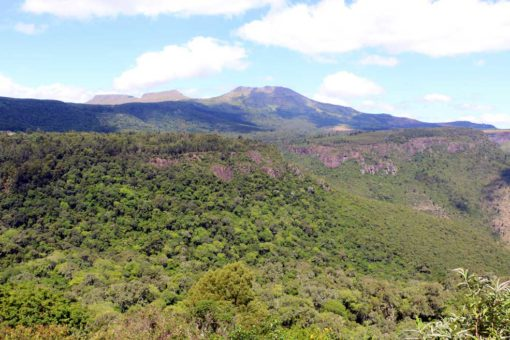 Beautiful view on Hogsback 1 peak from the view point at Away with the Fairies hostel.