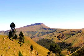 Hogsback mountain