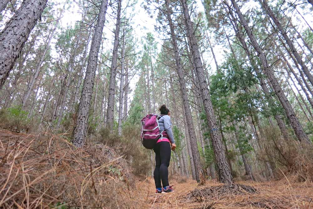 Alya standing in the forest
