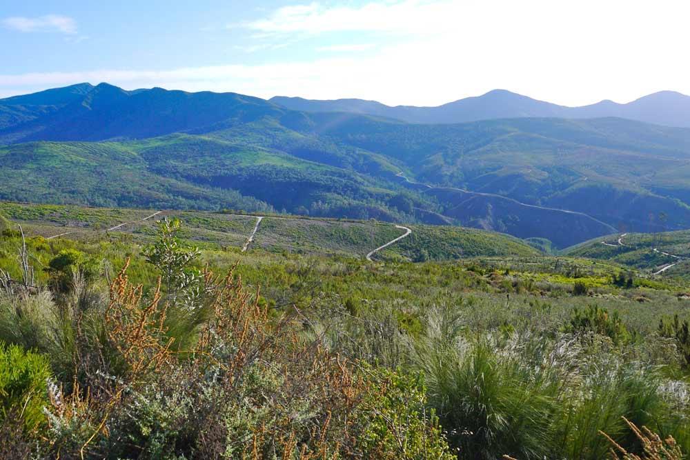 Mountain scenery on the Outeniqua Trail
