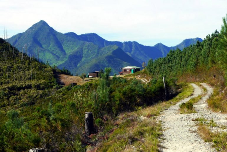 Outeniqua trail hiking guide