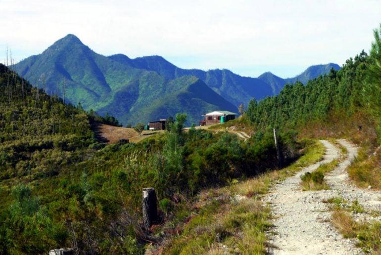 Outeniqua trail hiking guide