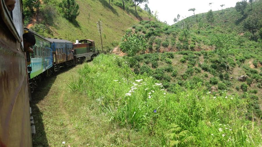 Going through tea plantations by train in Sri Lanka.