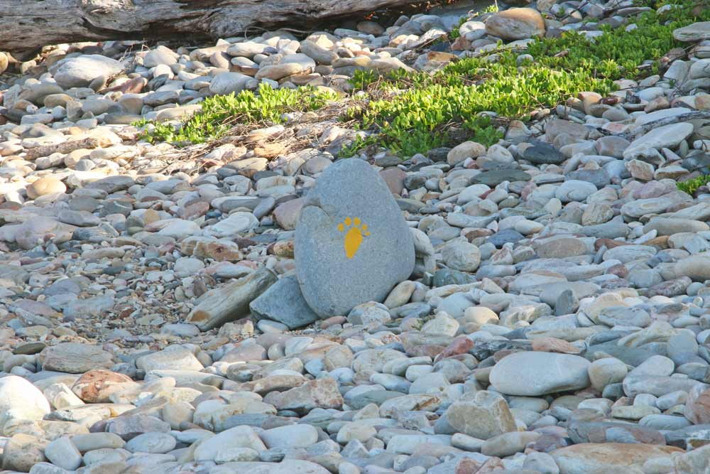 A yellow footprint marking the route on the Otter Trail