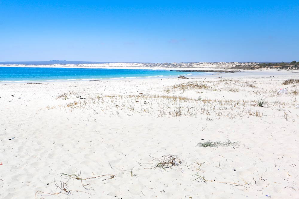 Stunning white sand beaches on the west coast near Paternoster