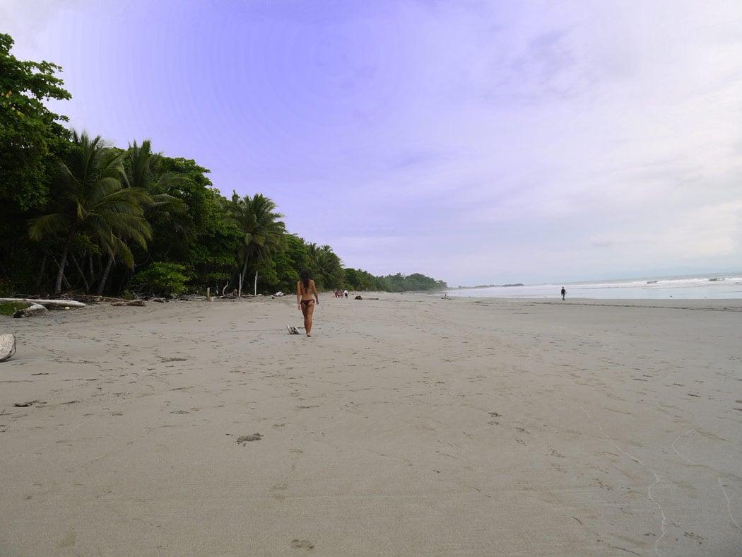 Playa Grande Montezuma