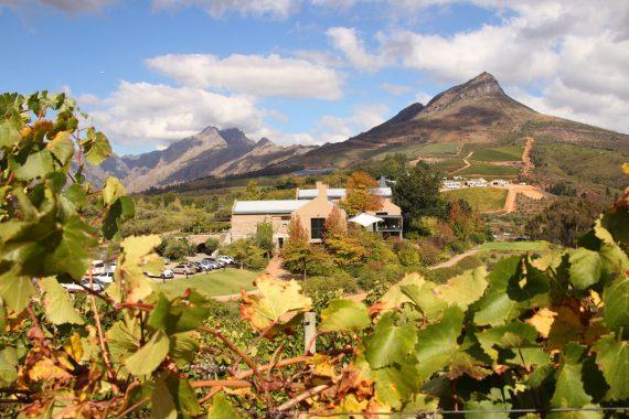 Tokara wine estate, Stellenbosch