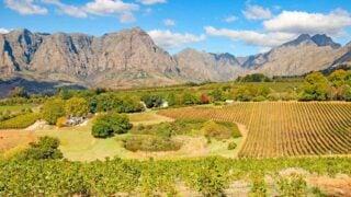 The scenery near Tokara wine estates a must visit farm in stellenbosch