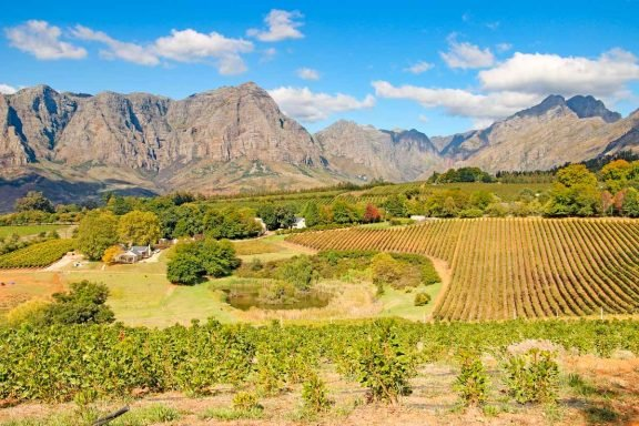 The scenery near Tokara wine estates a must visit farm in stellenbosch
