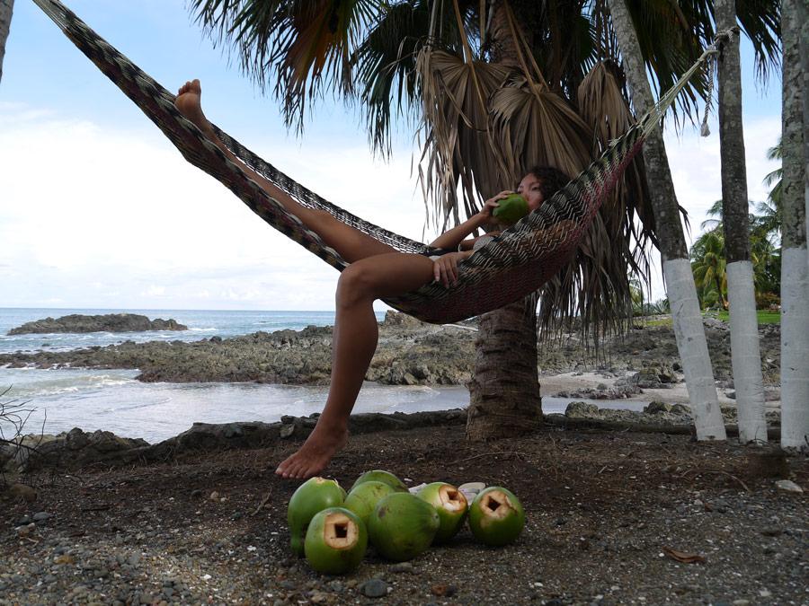 drinking coconut costa rica