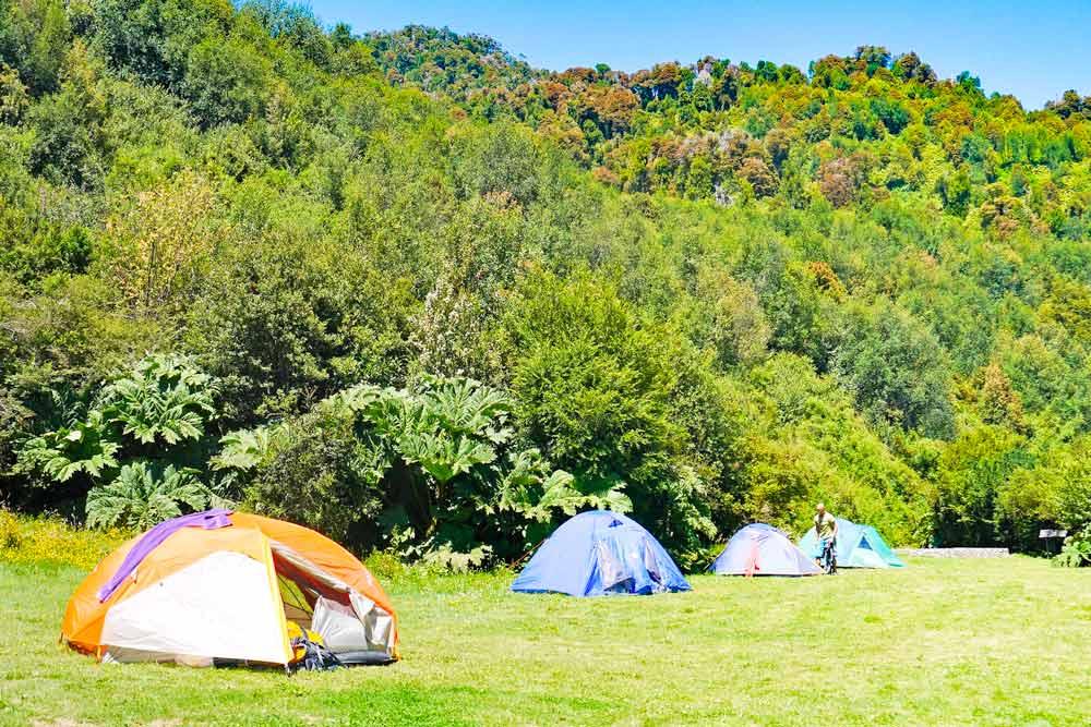 Carlos Cuevas Campsite, Pumalin park, Patagonia