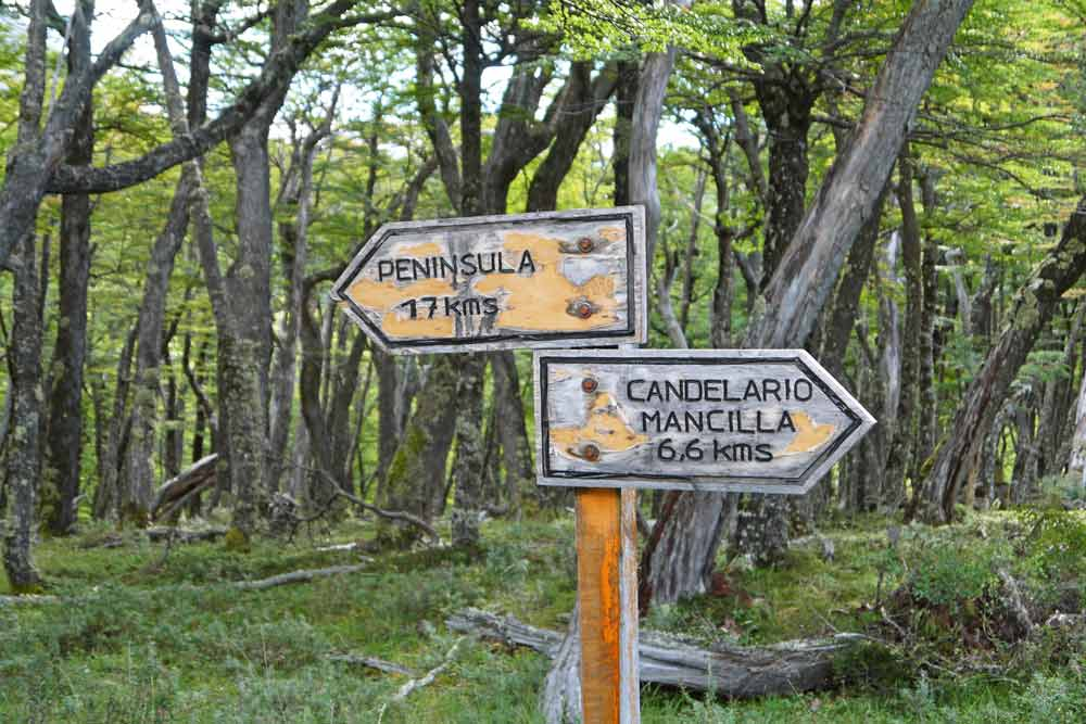 A wooden sign indicating the start of the O'Higgins hike