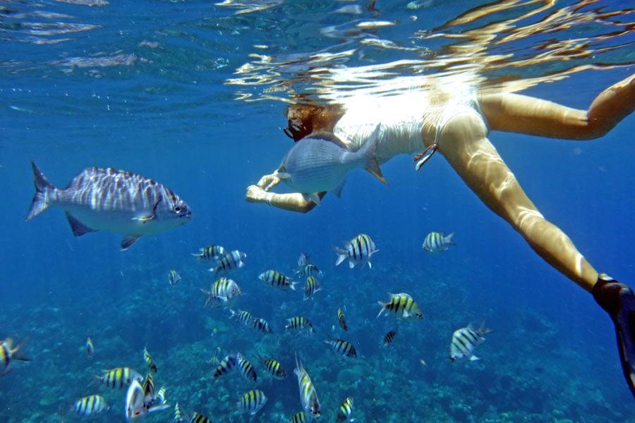 snorkeling from the beach Roatan, Honduras