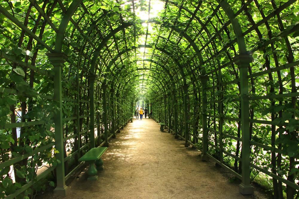 The Summer Garden, St.Petersburg, Russia