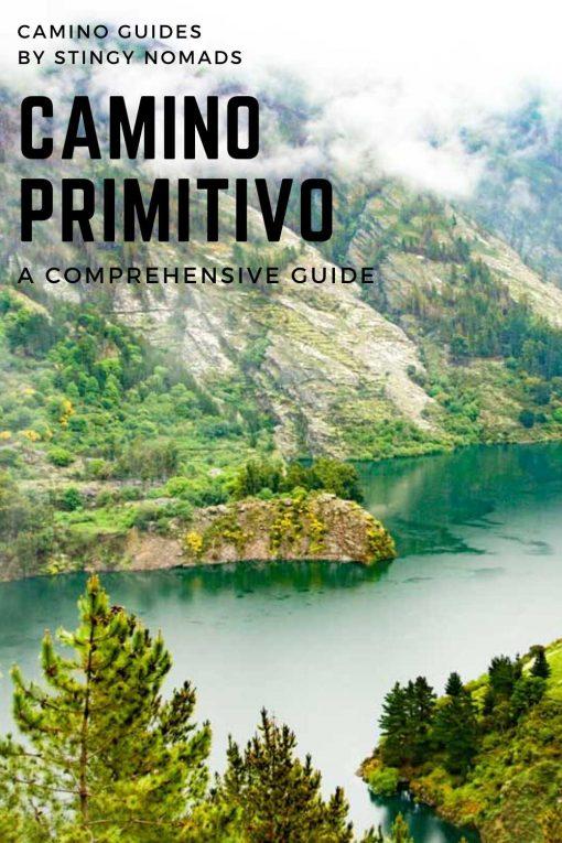 Camino Primitivo pin