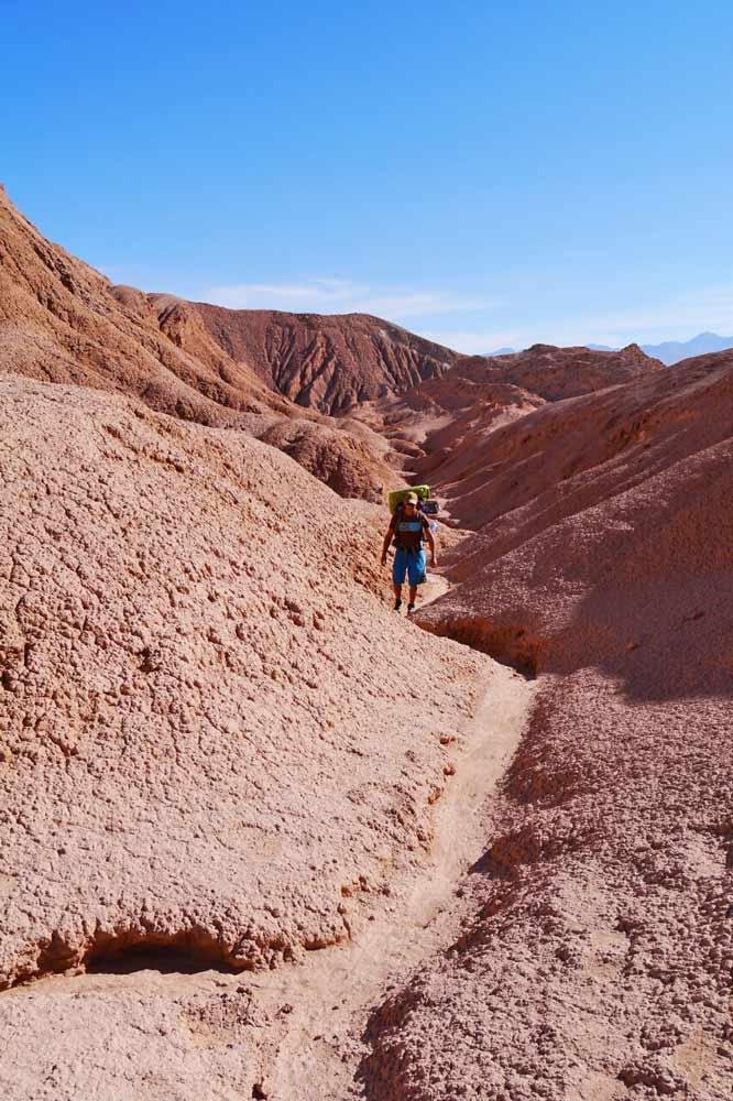 Campbell hiking in the Atacama desert