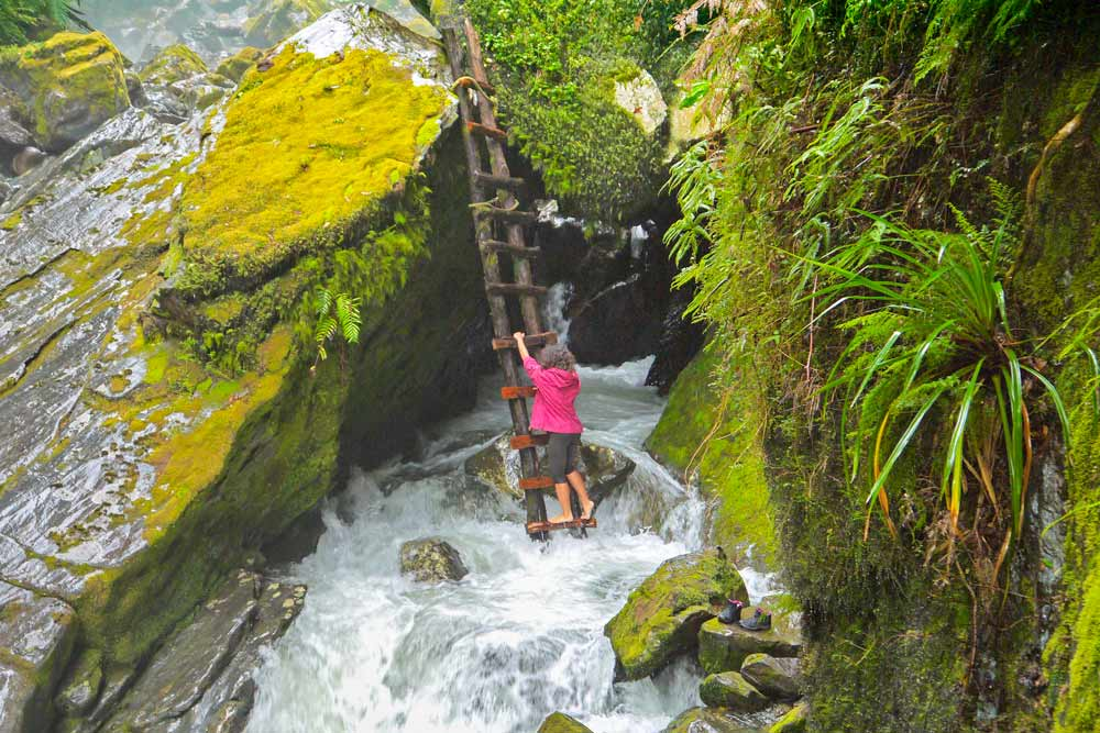 Alya climbing the ladder to get to the waterfall, Pumalin park, Carretera Austral