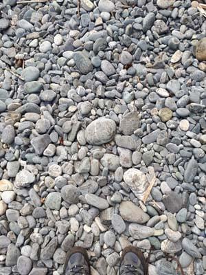 rocky trail juan de fuca marine trail