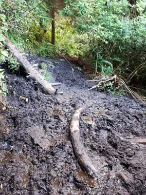 mud on the trail