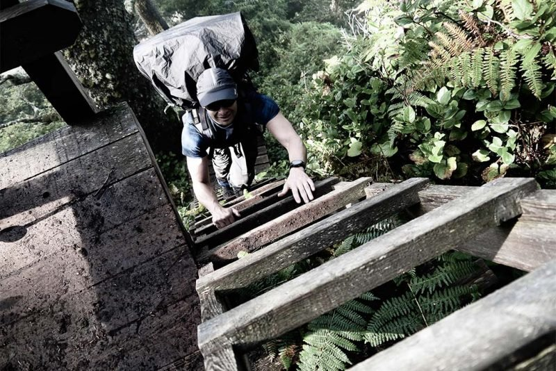 Ladder west coast trail stingy nomads