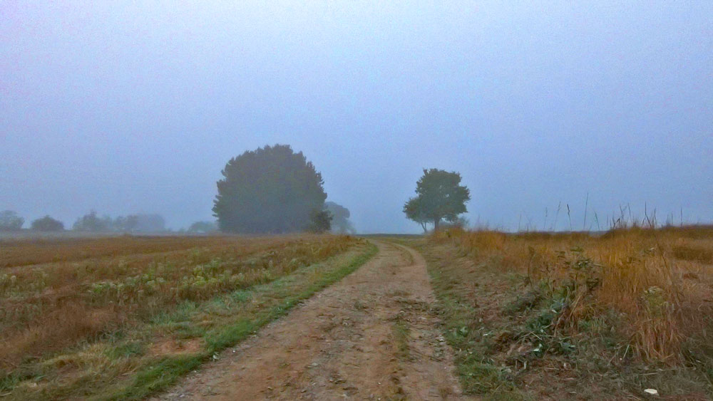 Early morning on the Camino de Santiago from Sarria