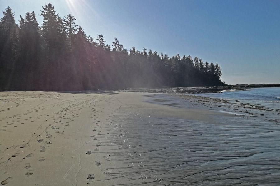 Beach hike west coast trail vancouver island canada