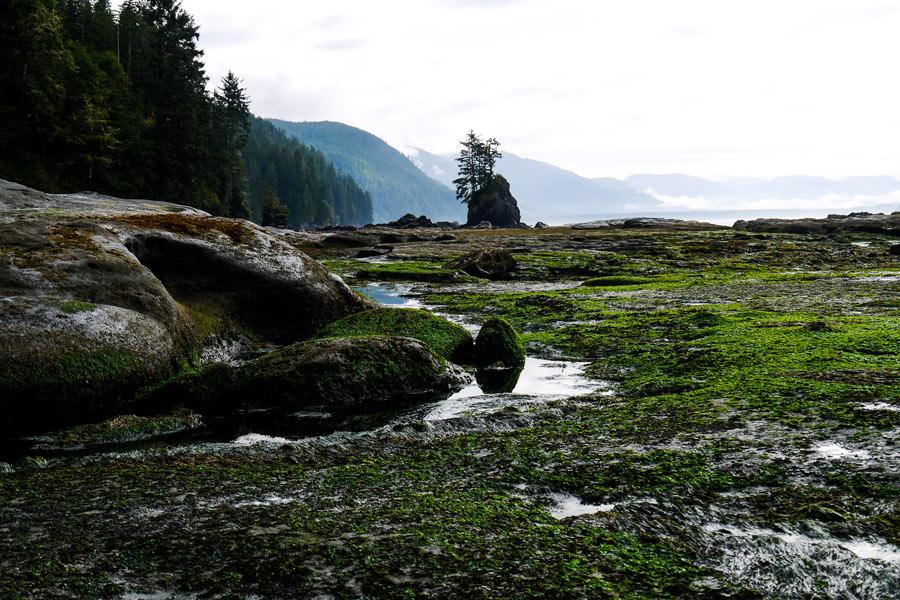 West Coast Trail Beach Vancouver Island Canada