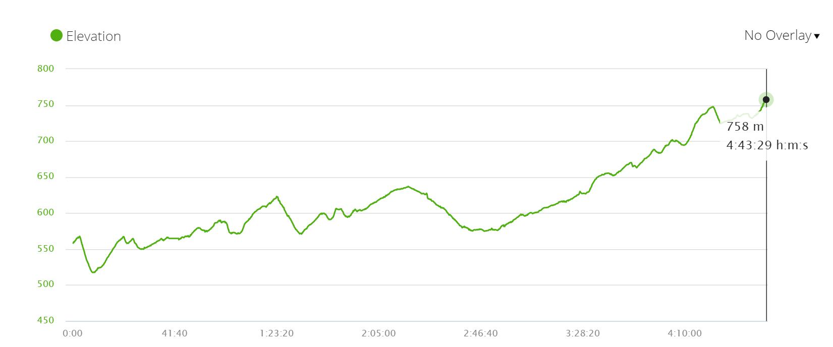 Camino Francés elevation profile stage 11