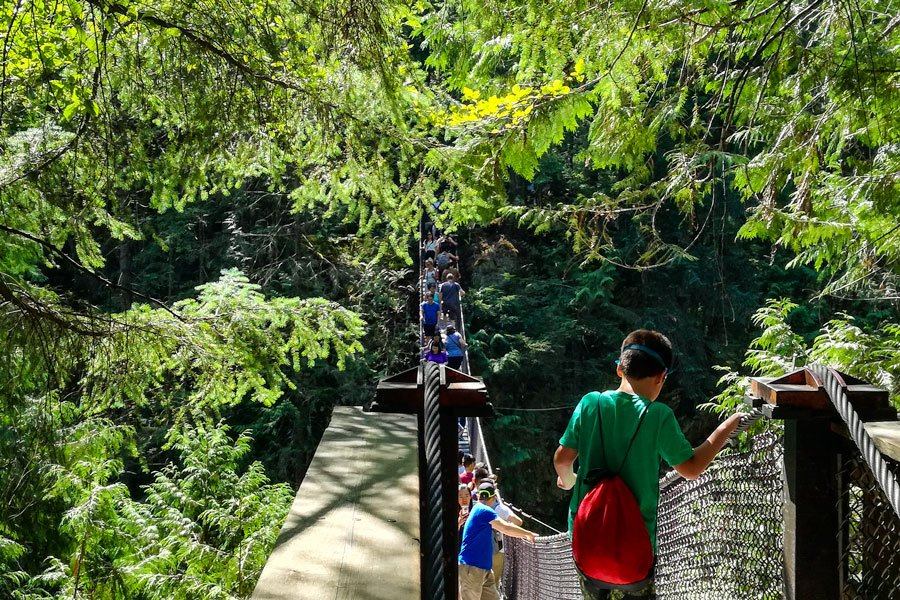 The Lynn Canyon suspension bridge. This bridge is very busy over weekends.