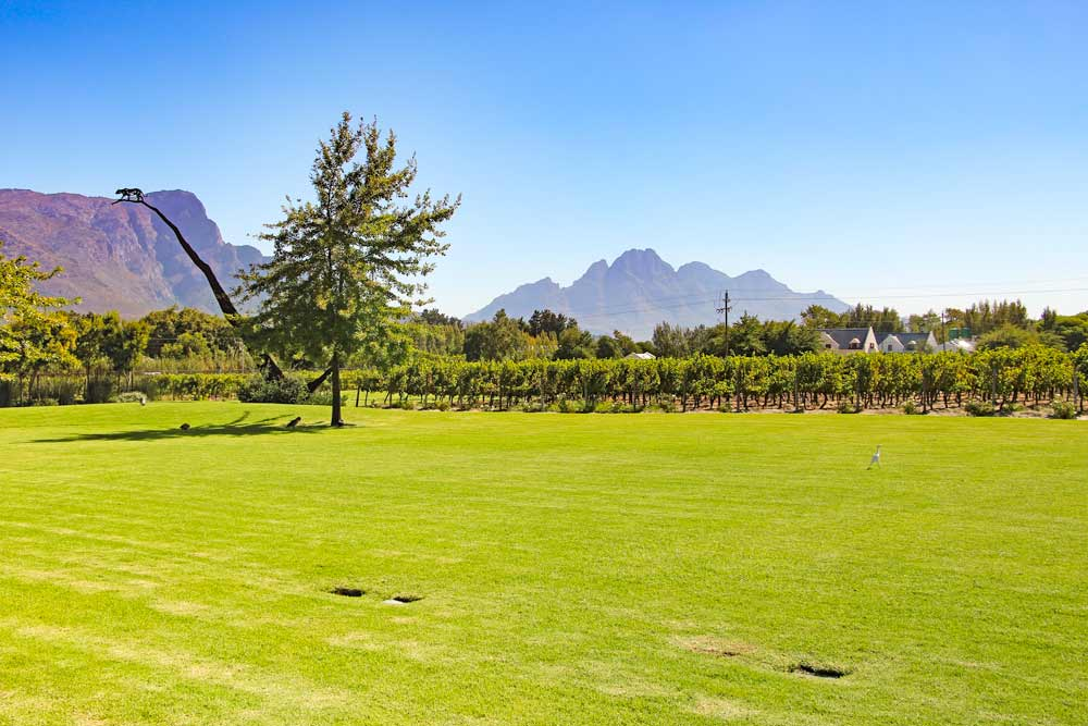 Breathtaking views from the restaurant area at the Leopard & # 39; s Leap property in Franschhoek