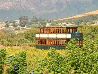 Franschhoek wine tram a must-do thing in Franschhoek, South Africa