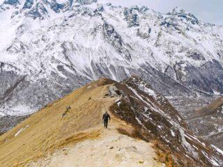 Fantastic scenery on the Langtang trek, Nepal