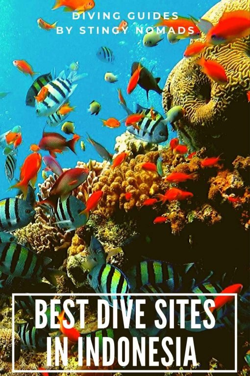Diving Indonesia pin