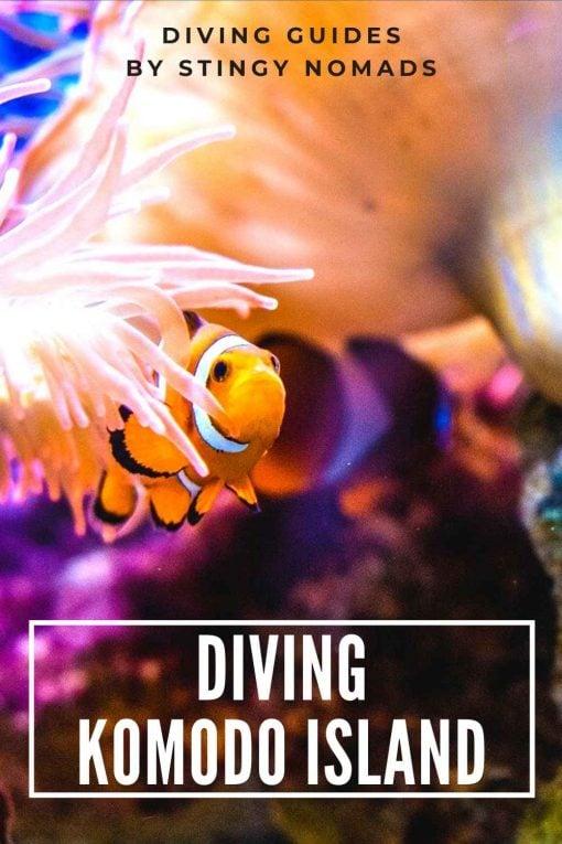 Diving Komodo Island Indonesia pin