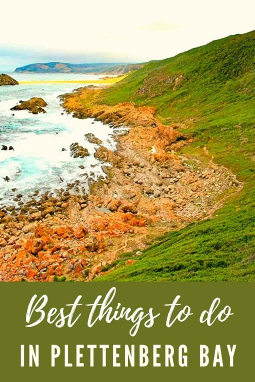 Things to do in Plettenberg Bay South Africa pin